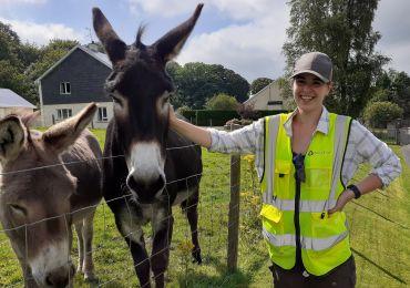 Juliane  donkeys