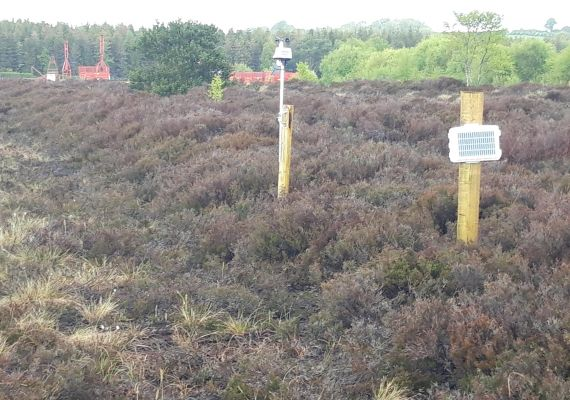 New weather stations in situ